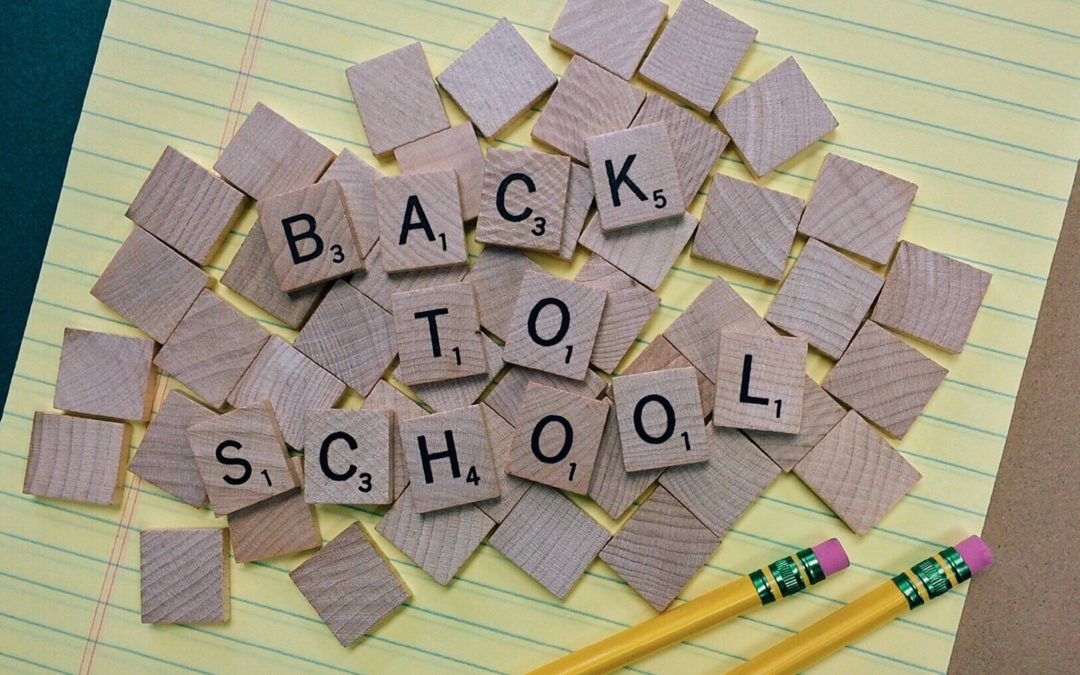 Back to school for teachers